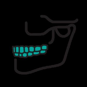Oral and Maxillofacial 1